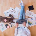 Flexible working cat (1)